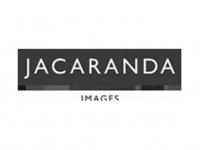 jacaranda11